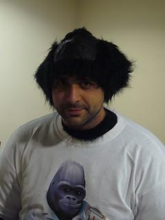 Brian the gorilla
