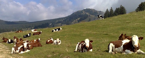 Near Col de Combe Blanche