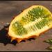 Horned melon - מלון מקורנן