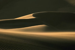 Shifting Sands photo by Nature's Gift Photography