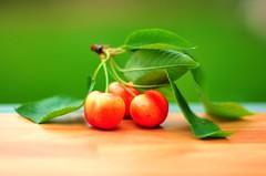 Fresh Cherries photo by **Shutterbug Gal**