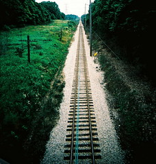 Railroad weeds photo by kevin dooley