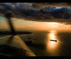 Golden Flight photo by ecstaticist