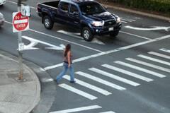 crosswalk.gif