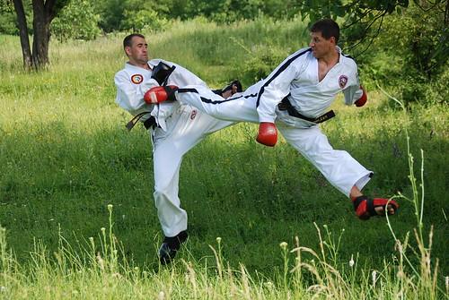 Sergiu ?i Radu Filat la antrenament Taekwon-Do.