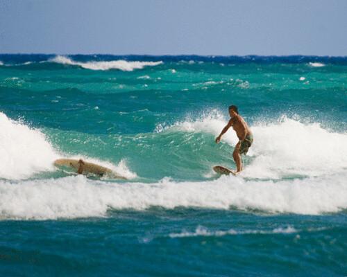 surf1.gif