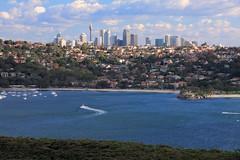 Sydney Cityscape photo by RezaG!