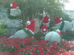 More Elephant Santas