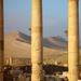 Syrië and Jordanië-02204 © Bart Plessers