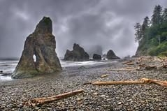 Rainy Olympic Coastal Memories photo by Fort Photo