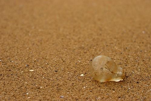 Ampoule sans culot trouvée sur une plage