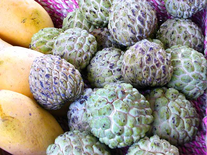 atis and mangoes