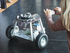 cockroach controlled mobile robot # 2