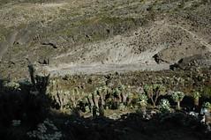 'Een van de vele valleien