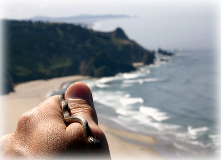 Snake at Cascade Head