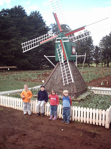 Kids and the windmill
