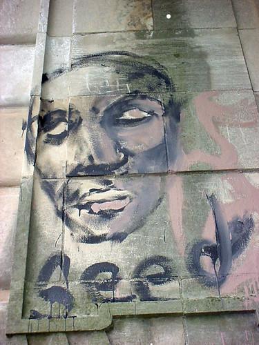 Seed Graffiti 2661