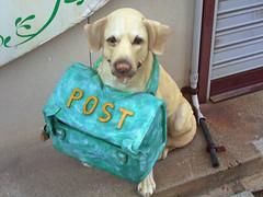 Post Dog #2