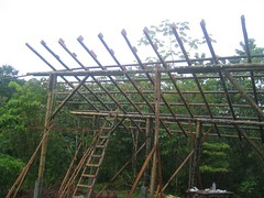 Bamboo classroom