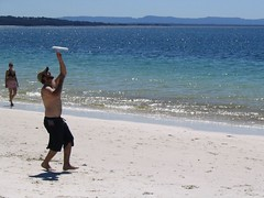Patto catches the frisbee