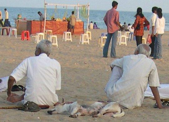 Beach Scene - 2