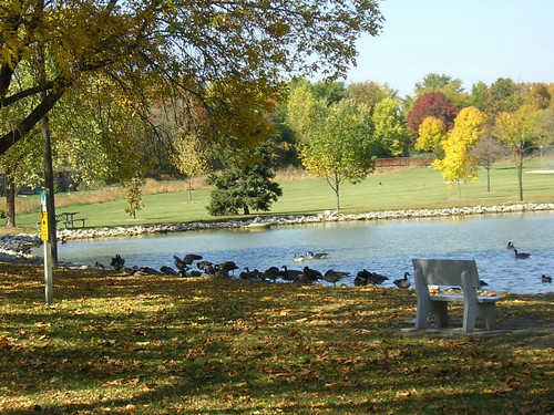 fall park 1