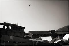 Muzaffarabad-045