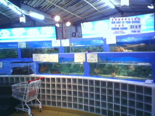The seafood selection area