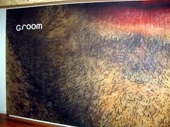 g-room 02