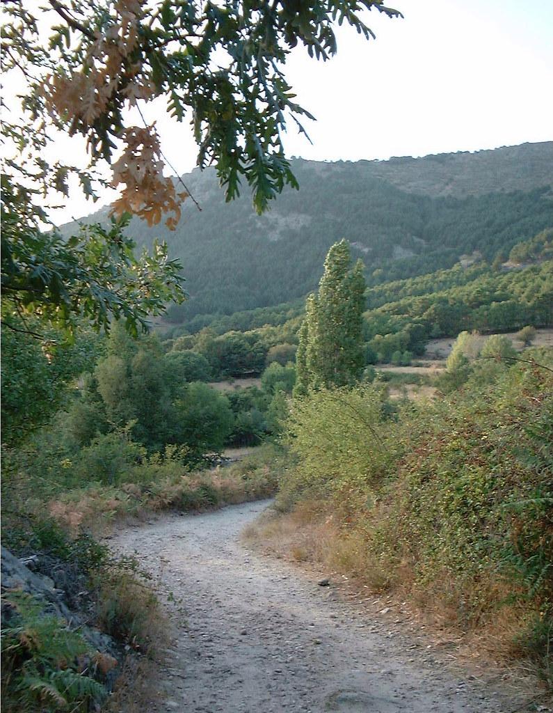 Yo voy soñando caminos... (atardecer en el camino GR-10 a la altura de Bustarviejo)
