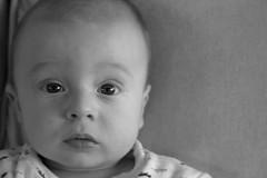 Oliver 4.5 months