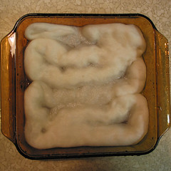 Dyeing fiber - soaking