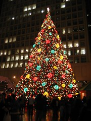 Daley Plaza Tree 1