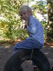 d tire swing