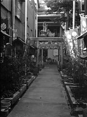 Endouji with PEN EE-3 #14