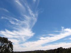 big sky1