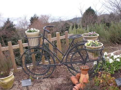 Nunobiki Herb Park: Garden 01