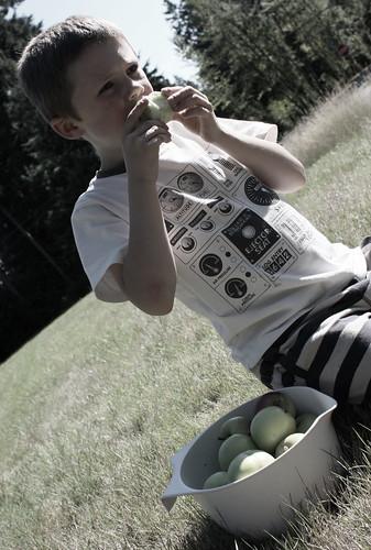 eating garden apples