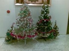 Pohon Natal di Condo