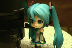 Miku and Carl Zeiss 85/1.4ZA (PICT0024) photo by Kelvin 相機下的世界