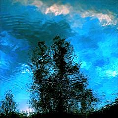 Sometimes my wild river is blue-eyed…!!! / Parfois ma rivière sauvage a les yeux bleus…!!! :))) photo by Denis Collette...!!!