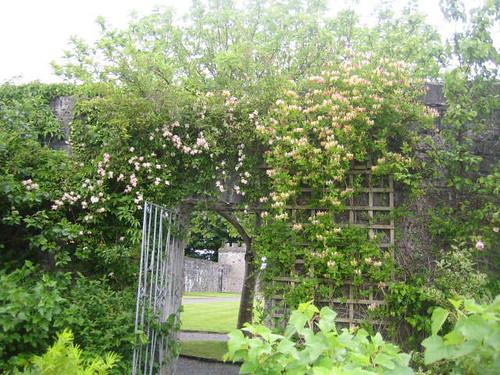 Portumna Castle Gardens-03.JPG