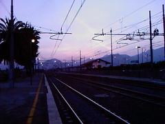 Photo-0007