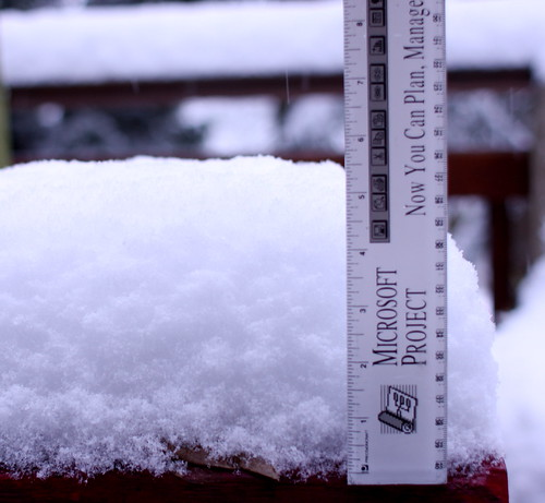 Project snow gauge