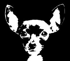 Chihuahua Black & White Stencil Dog Art Print photo by Pupaya