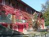 Geneva Autumn