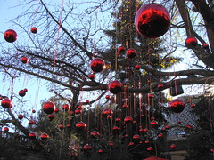Rosso Natale  -  Red Christmas photo by Cristina 63
