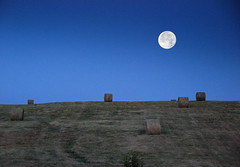Hay, it's a Full Moon! photo by outsideshot