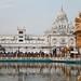 India_culture (1)