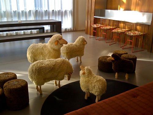 Lobby Sheep 6